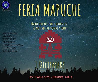 FERIA MAPUCHE RÜF CHE. 1 DICIEMBRE. BARRIO ITALIA